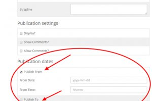 RX members: You can now customise the start and end dates of your blog articles!