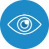 Pageviews icon