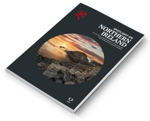 Spotlight on Northern Ireland download