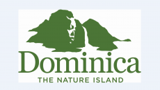 Discover Dominica Authority logo