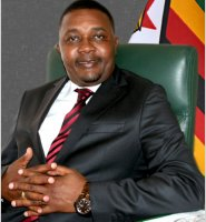 Honourable Engineer Walter Mzembi (MP)