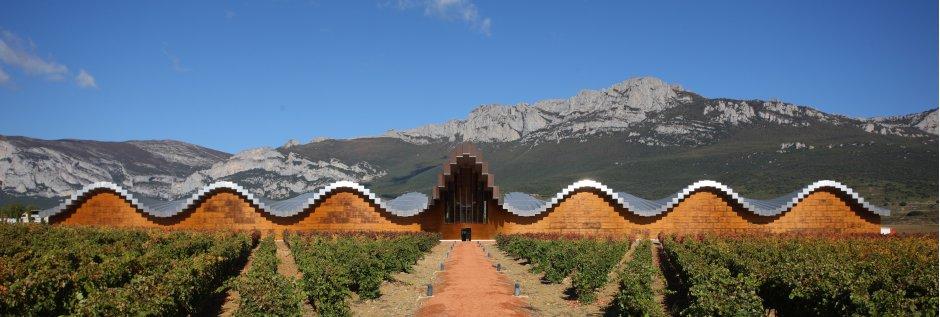 Basque Country wine farm