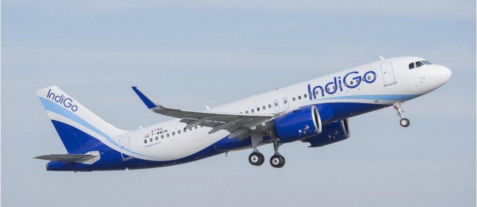 A320 indigo