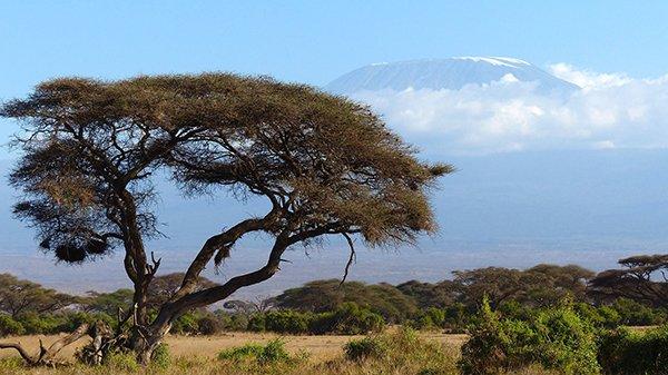 Why Kenya