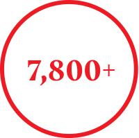7800+